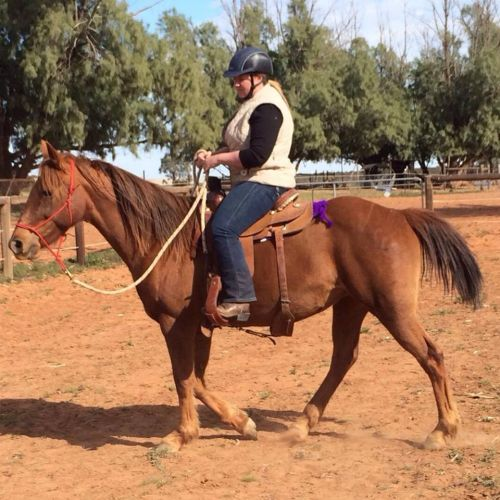 Abbey - 2014 Lesson with Mel at Carmens place.