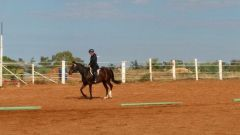 Having a bit of a practice trot before our event - Border Western Horse Club B Show 23/4/17