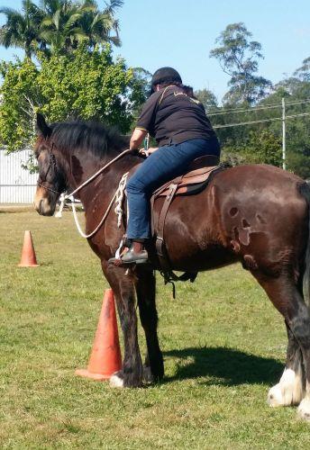 Horses Birthday games 2017