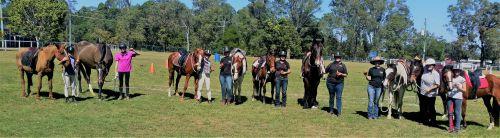 Horses Birthday Group 2017