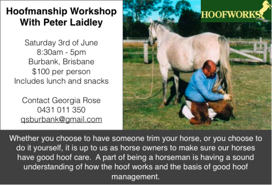 Hoofmanship Workshop.png