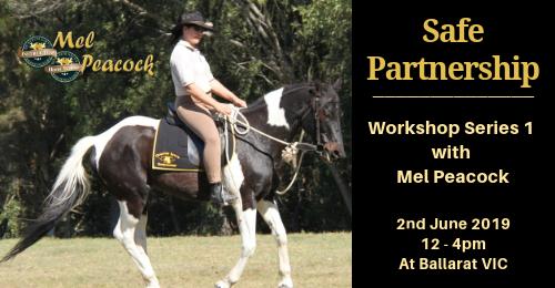 Ballarat Safe Partnership1.png