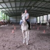 Looking for an emotionally fit herd for young horse - last post by tkp1