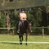 Harmony in Motion camp with Meredith Ransley - Bell Qld - last post by clairestack